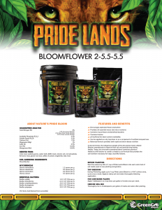 Pride Lands Bloom